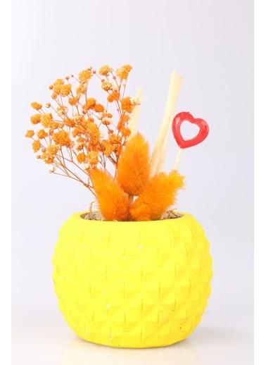 Kibrithane Çiçek Yapay Çiçek  Beton Saksı Kuru Çiçek Aranjman Kc00200749 Renkli